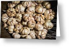 Garlic In A Basket. Greeting Card