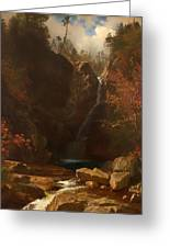 Glen Ellis Falls Greeting Card