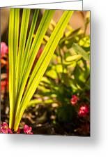 Glowing Iris Leaves 1 Greeting Card