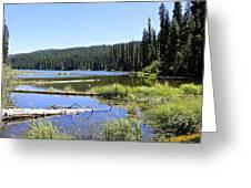 Gold Lake Greeting Card