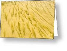 Golden Sand Pattern Created By Surf On Beach Greeting Card