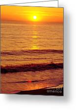 Golden - Sunrise Greeting Card