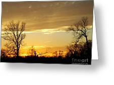Golden Sunset 61 Greeting Card