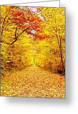 Golden Trail Greeting Card by Andrea Dale