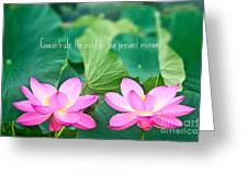 Gorgeous Pair Pink Lotus Couple Blossoms Green Leaves Greeting Card