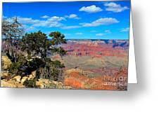 Grand Canyon - South Rim Greeting Card