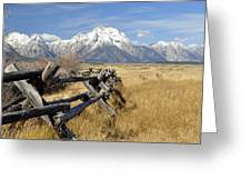 Grand Teton Nat'l Park Greeting Card