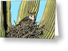 Great Horned Owl Bubo Virginianus Greeting Card