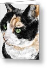 Green Eyed Cat Greeting Card