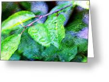 Green Leaf As A Painting Greeting Card