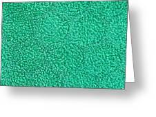 Green Towel Greeting Card