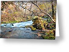 Greer Spring  Greeting Card