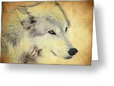 Grey Wolf Art Greeting Card