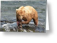 Grizzly Bear Salmon Fishing Greeting Card
