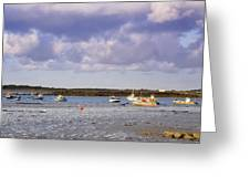 Guernsey Coastline Greeting Card