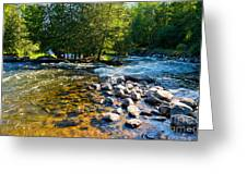 Gull River Greeting Card