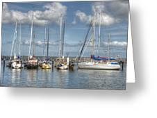 Hafen Barth Greeting Card