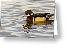Handsome Wood Duck Greeting Card