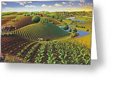 Harvest Panorama  Greeting Card