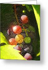 Harvest Time Greeting Card by Ron Regalado