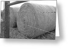Hay Bales - Black And White Photography Greeting Card