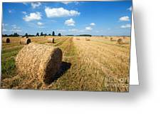 Haystacks In The Field Greeting Card