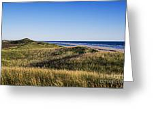 Head Of The Meadow Beach Greeting Card