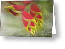 Heliconia Rostrata Greeting Card