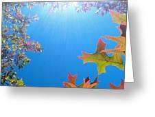 Hello Autumn Greeting Card
