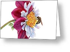 Hello My Flower Greeting Card