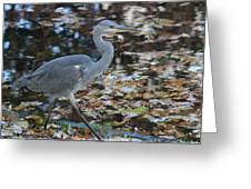 Heron On The River Greeting Card