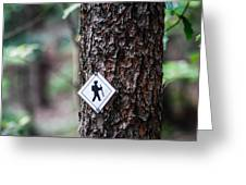 Hiking Trail Sign On The Forest Paths Greeting Card