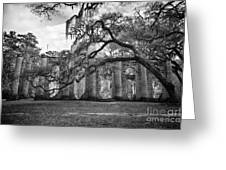 Historic Sheldon Church 4 Bw Greeting Card