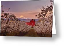 Hood River Sunrise Greeting Card by Darren  White