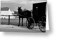 Horse And Buggy And Farm Greeting Card