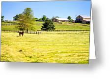 Horse Farm  Greeting Card