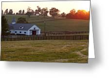 Horse Farm Sunset Greeting Card