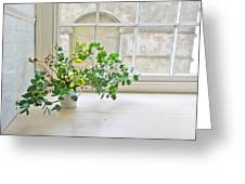 House Plant Greeting Card