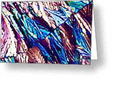 Hydroquinone Crystals In Polarized Light Greeting Card