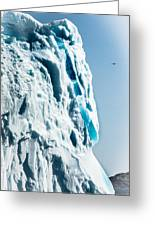 Ice Xxix Greeting Card by David Pinsent