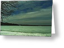 Icing On The Lake Greeting Card