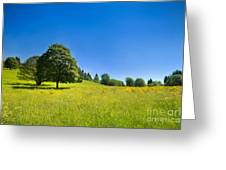 Idyllic Landscape Greeting Card