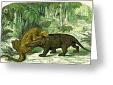 Iguanodon Biting Megalosaurus Greeting Card