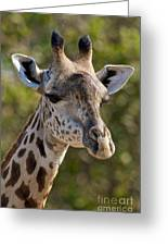 I'm All Ears - Giraffe Greeting Card
