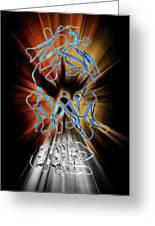 Immunoglobulin G Antibody And Egg White Greeting Card