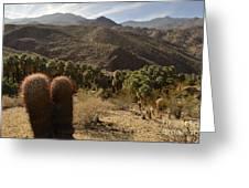 Indian Canyons Greeting Card