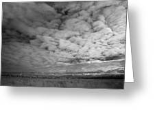 Infrared Picture Of The Nature Area Dwingelderveld In Netherlands Greeting Card by Ronald Jansen