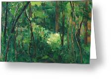 Interior Of A Forest Greeting Card