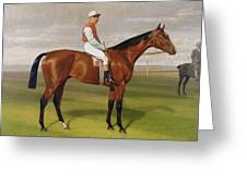 Isinglass Winner Of The 1893 Derby Greeting Card