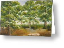 Island Pines Greeting Card